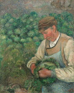 The Gardener - Old Peasant with Cabbage